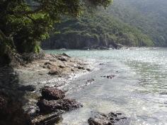 salt river 024